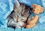 Good Night SMS in English