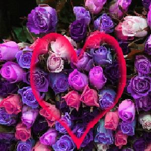 Best-Flirt-SMS-Hindi-Love